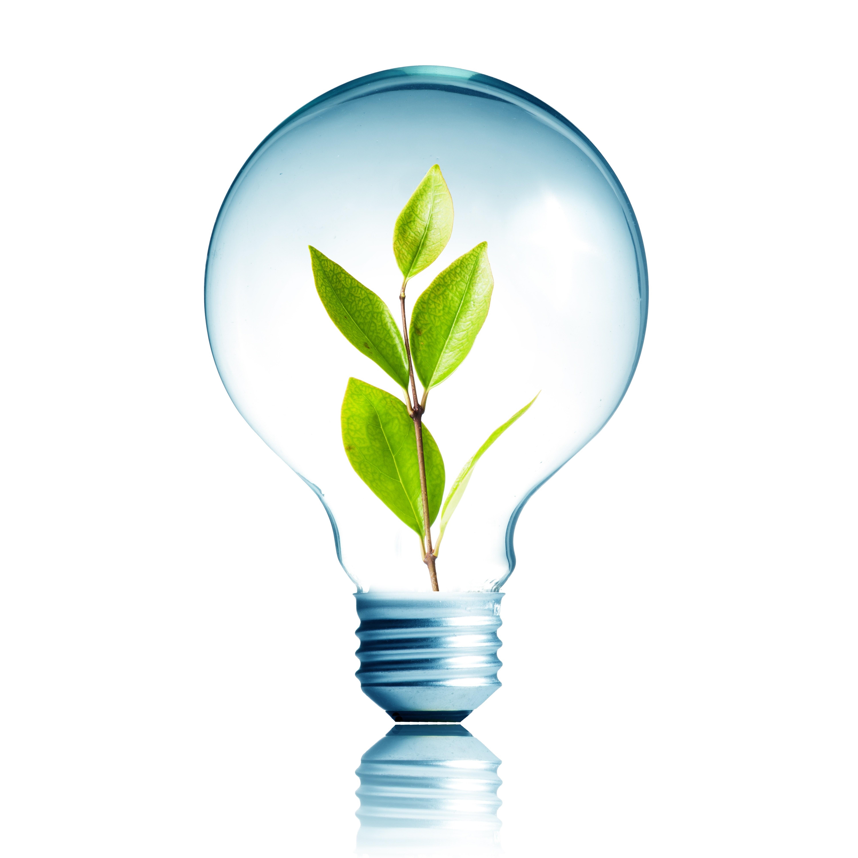 Octubre 21, 2019: En este Día Mundial del Ahorro de Energía debemos recordar que el uso eficiente de la energía es responsabilidad de todos: FIDE